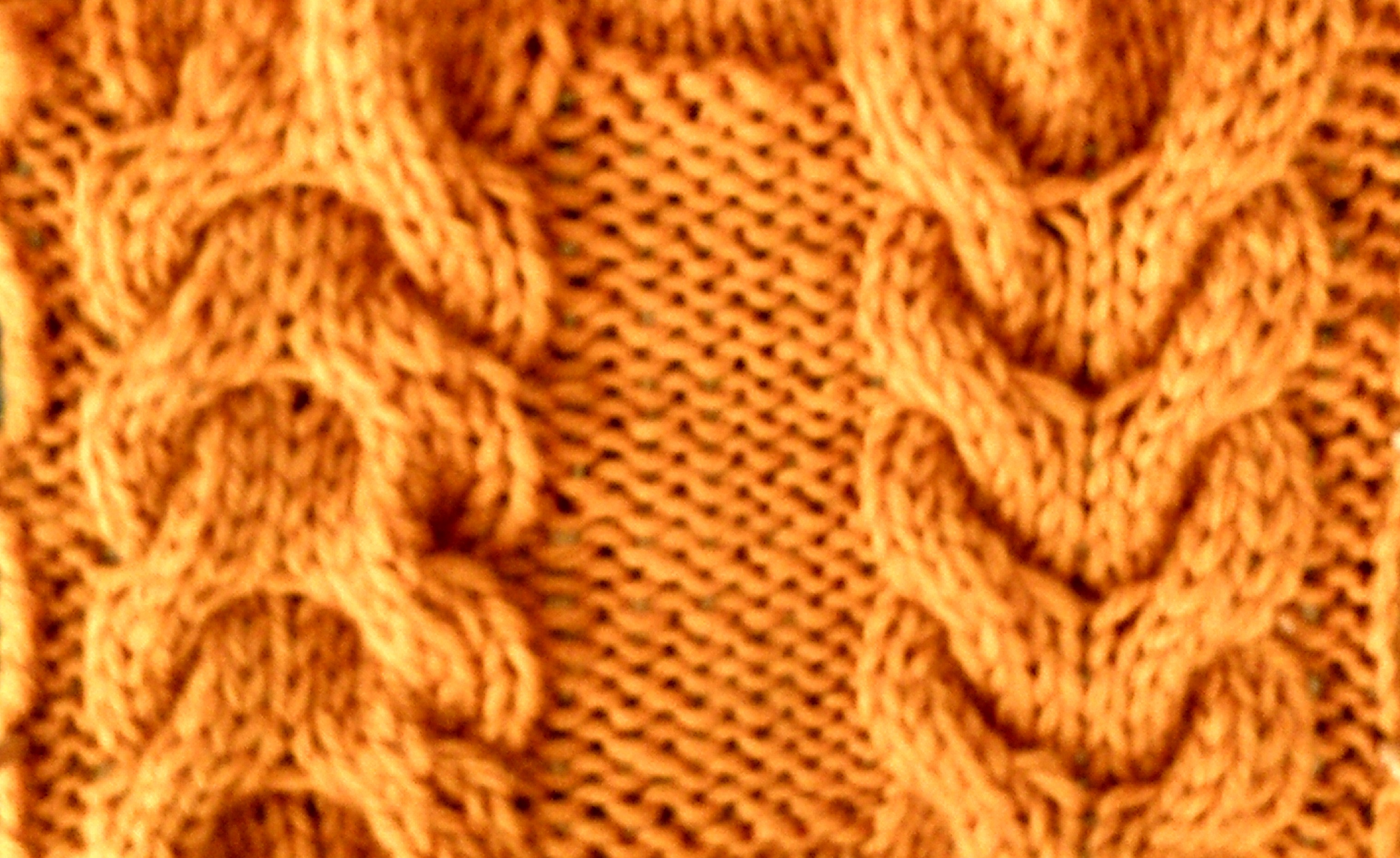 Horseshoe cable knit pattern gorinkfo for cable knitting archives horseshoe cable knit pattern bankloansurffo Image collections